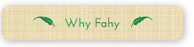 Why Fahy